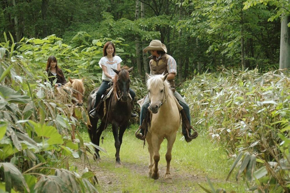 Summer Horseriding